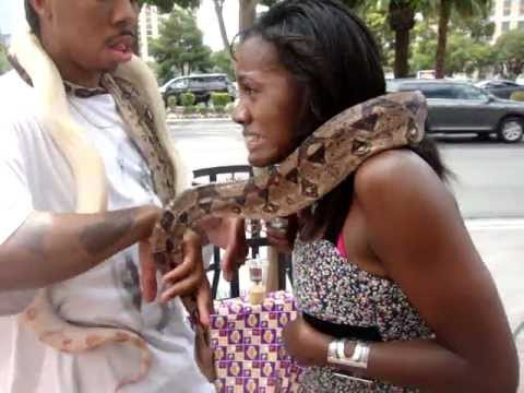 Girl with Snakes in Vegas