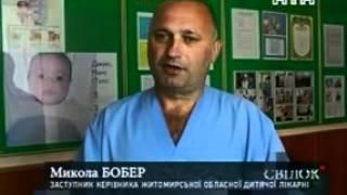 В Житомирской области змеи покусали 7 человек