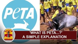 What is 'PETA'...? - A Simple Explanation Kollywood News 12-01-2017 online What is 'PETA'...? - A Simple Explanation Red Pix TV Kollywood News