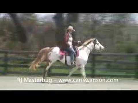 RJ, Star Horse from Hidalgo