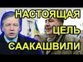 Чего добивается Саакашвили на самом деле. Аарне Веедла