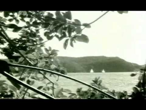 Angus and Julia Stone - Mango Tree [Official Music Video]