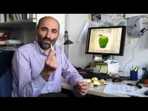 mela terrestre e consumo di suolo