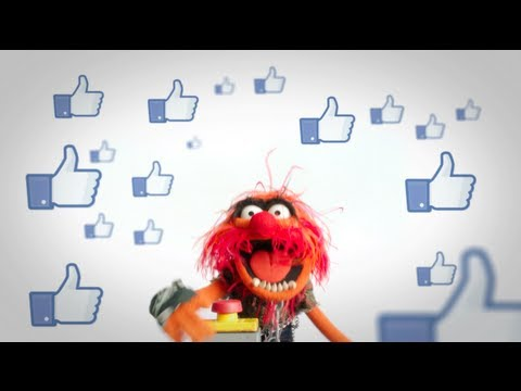 Animal Facebook Fan-A-Thon Promotional Video