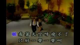 502我是一只畫眉鳥Cha Cha StandardDance @blackjackstory.com 502.mp4
