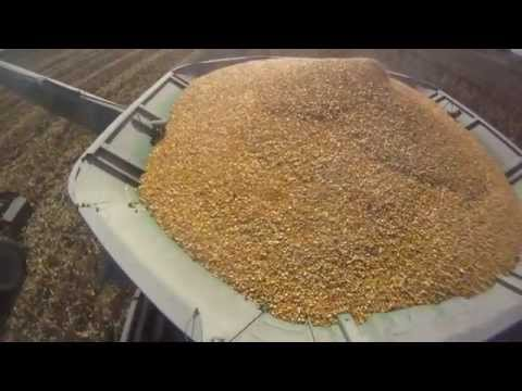 John Deere 9770 Combine, Case IH 305 Magnum in Corn Harvest Fall 2010