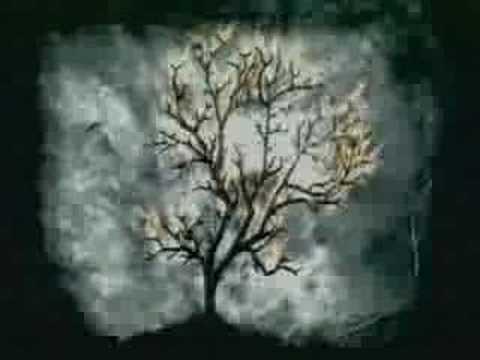 Samara Morgan-s Cursed Video [The Ring]