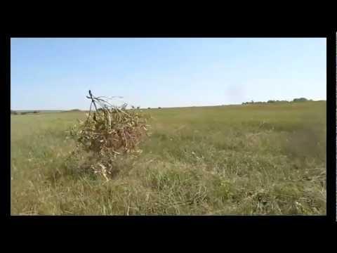 Игорь Растеряев. Веселей.