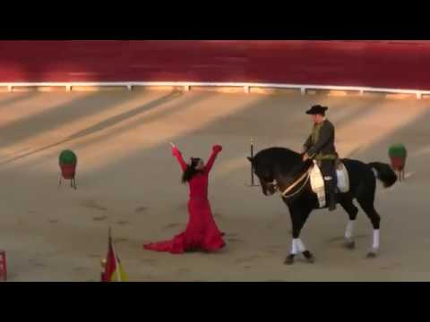 """El Arte de Andalucía a Caballo"""" Plaza Toros Vinaròs"""
