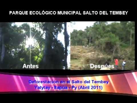 Desforestación en el Salto Tembey