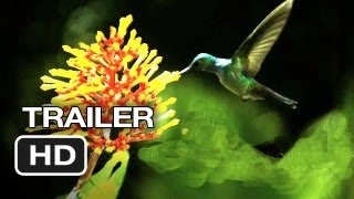 Disneynature: Wings of Life Official US DVD Release Trailer (2013)  - Meryl Streep Movie HD