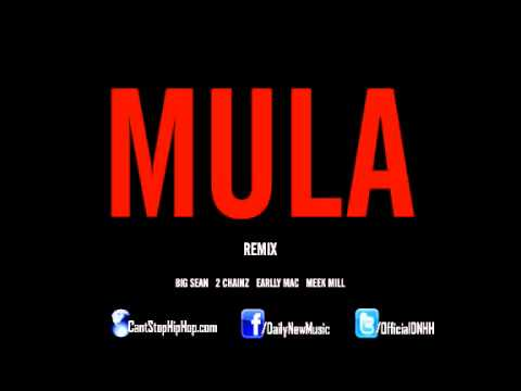 Big Sean - Mula (Remix) (Feat. 2 Chainz, Earlly Mac & Meek Mill)
