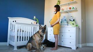 Απο την έγκυο στο μωρό σε 90 δευτερόλεπτα