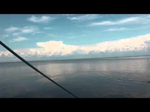 рыбалка на дамбе весной