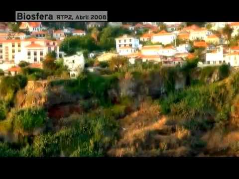 Tragédia da Madeira: Um desastre anunciado em 2008 por Biosfera 2/2