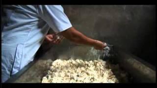 Oficio de Paciencia la tradición del queso Cotija 3 de 4