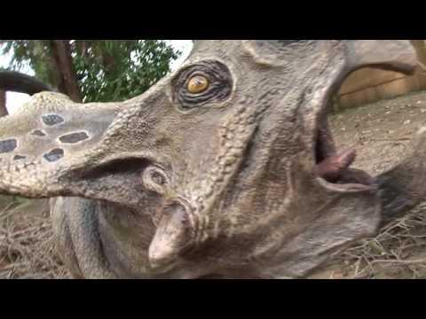 Cuccioli & Dinosauri