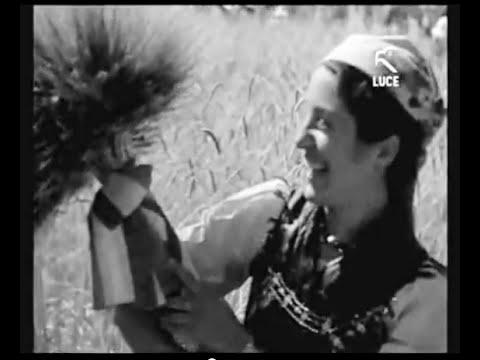 Sagra della mietitura nell'agro di Sanluri - 1937 [Istituto LUCE]