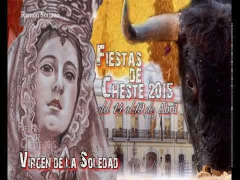 Spot de las Fiestas de la Virgen de la Soledad de Cheste 2015