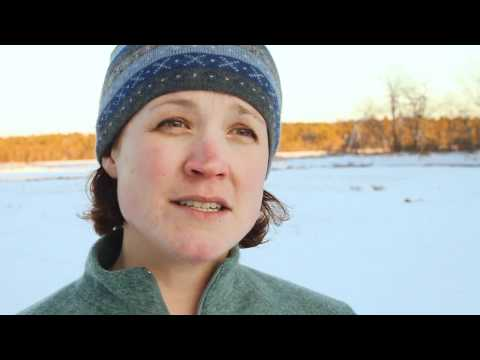Natural Maine Minute: Rachel Carson