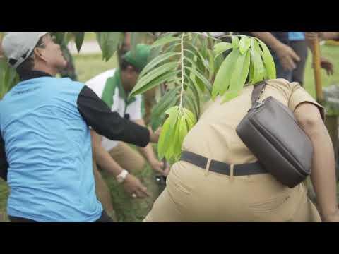 Aksi Penanaman Pohon