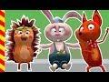 Мультик про врача. Мультик про больницу. Лечим Зайца, Лису и Ежика. Животные для детей про животных.