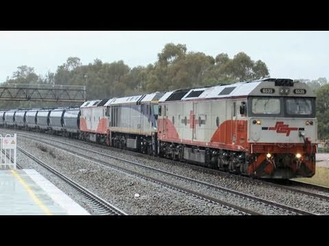 El Zorro grain train at East Maitland - Grain Trains in NSW