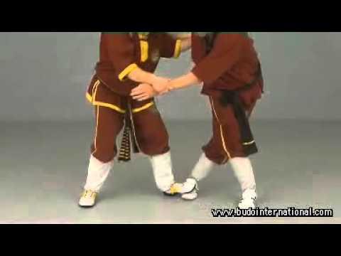Weng Chun Kung Fu Vol2 Andreas Hoffman -KCxToxlUDmw