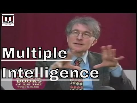 What is multiple intelligence theory?