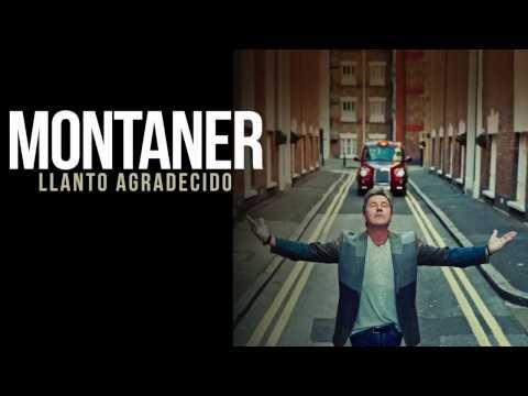 Ricardo Montaner Llanto Agradecido (2014) Audio