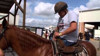 UCF Connetion: Horses for Heroes