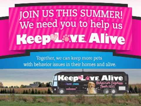"Thumbnail image for 'Ceva ""Keep the L.O.V.E. Alive Behavior Express Tour 2012""'"