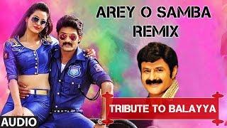 Arey O Samba (Remix) Full Audio Song I Pataas
