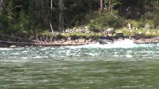 Fish-565 прохождение порога