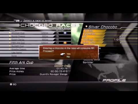 Final Fantasy XIII - 2: Silver Chocobo Build (Best Racer)