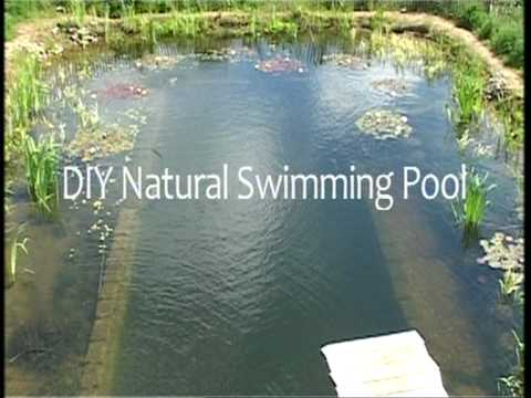 Simple Ways To Protect Against Swimming Pool Chemicals 500eco