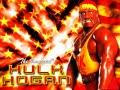 wwf hulk hogan wwf theme music