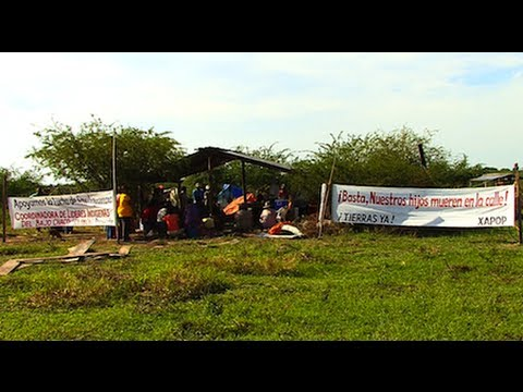 Paraguayan Indigenous Community Reoccupies Territory After 2 Decades of Forced Expulsion