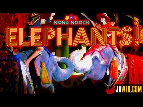 Nong Nooch Garden Elephant Show in Pattaya Thailand