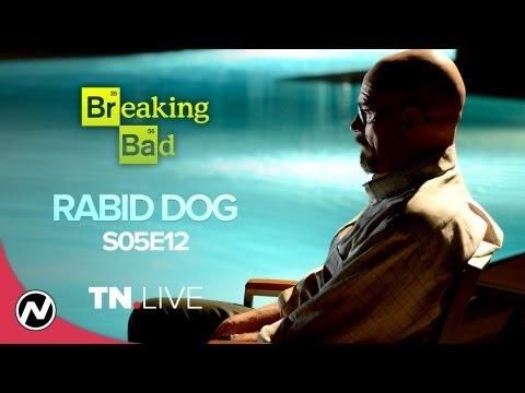 Breaking Bad 5x12: Rabid Dog (Review) - TN Live 19