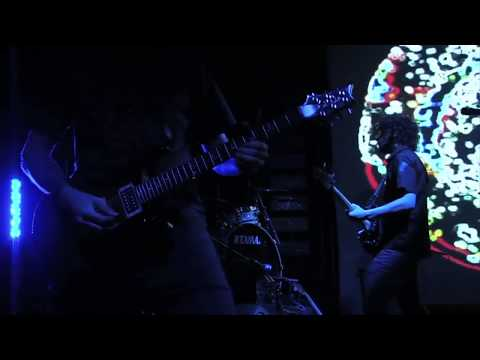 The Ocean Firmament (OFFICIAL LIVE VIDEO)