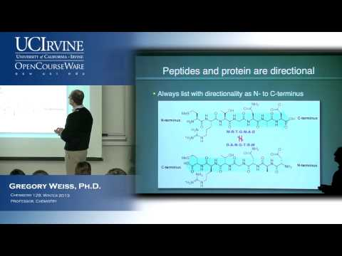 Chem 128: Intro to Chemical Biology. Lecture 10: Proteins and Ammino Acid Conformations