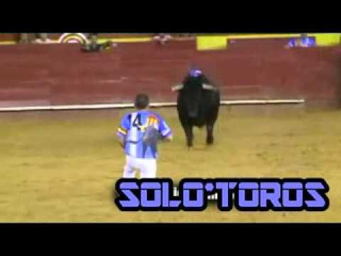 |SOLOTOROS| Concurso Recortes Valencia Julio 2010