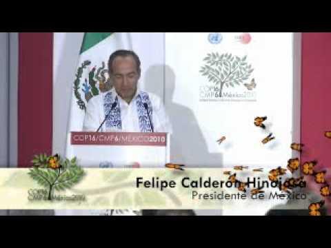 México presenta su visión para el programa REDD
