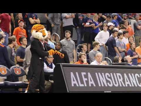 Auburn vs Florida Highlights 2017