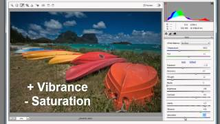 Photoshop Elements: More about Adobe Camera Raw File Format