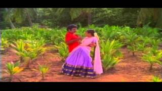 Danchave Menatha koothura Video Song - Mangammagari Manavadu