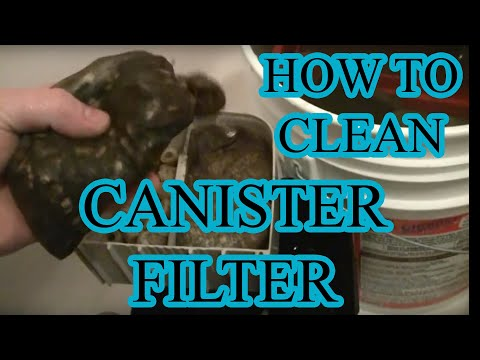 Cleaning the dirted tank and the canister filter.
