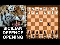 Letsplaychess.com presents Sicilian Defence Part 1