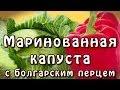 Маринованная капуста с болгарским перцем ★ видео рецепт